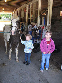 horse barn field trip